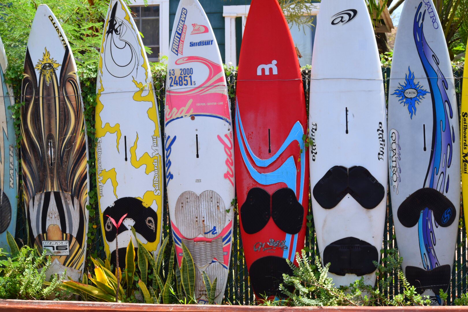 SURFBOARD, SURFBOARD IN PAIA - Muse Of Style